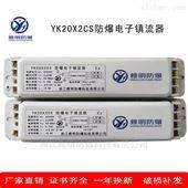YK20DFx2CS防爆电子镇流器190V至240V