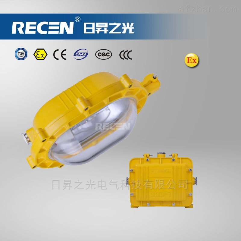 BFC8120海洋王防爆泛光灯