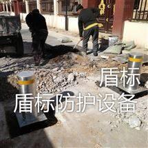 DB防冲撞金属升降柱 地面伸降路桩