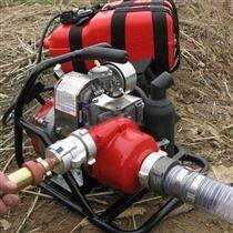 加拿大WICK250水泵 便携式森林消防接力水泵