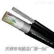 ZR-HJVVP 20*2*0.4局用電纜