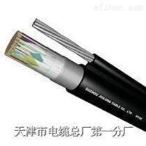 HJVVP 100*2*0.6HPVV通信电缆