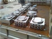 碳鋼鑄鐵防爆接線箱