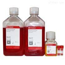 NK细胞高效扩增试剂盒现货