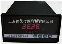 双通道振动监视保护仪RATION TM
