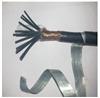 KVVP22铠装屏蔽控制电缆0.45/ 0.75kv 4*2.5