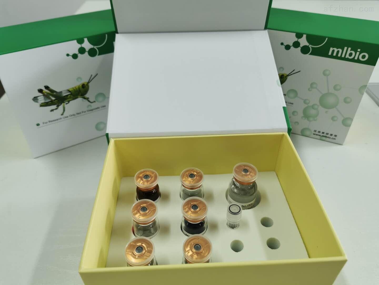 猪腺病毒PCR检测试剂盒