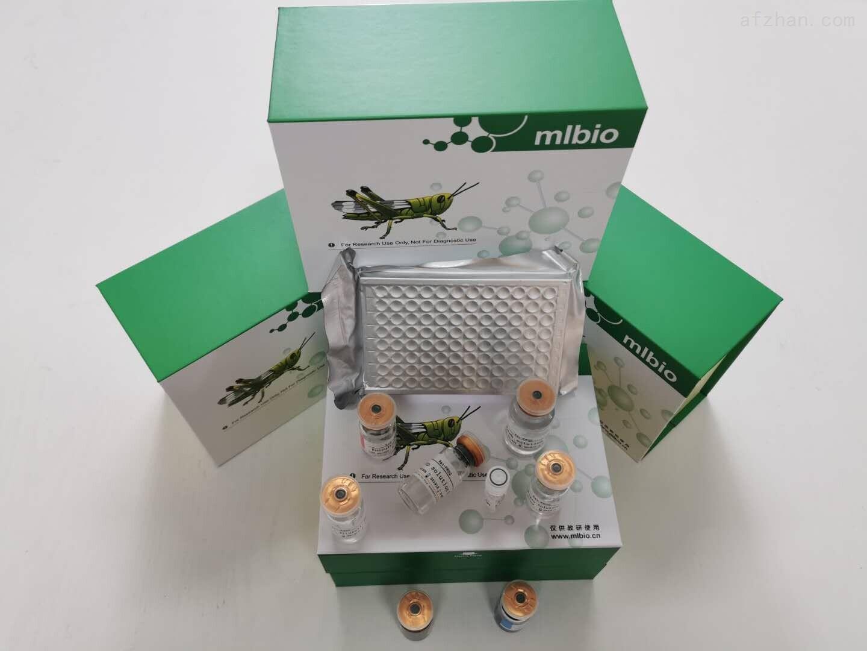 疟原虫PCR检测试剂盒