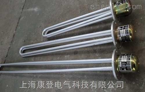 SRY2-/SRY4-型-浸入式油加热器