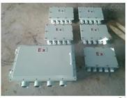 BXJ-2XG1-1/2 12XG3/4 防爆接线箱