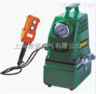 电动油泵(精致小巧型)