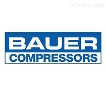 Danfoss Bauer齿轮减速电机