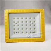 防水防尘100W免维护LED防爆灯(IICT6)