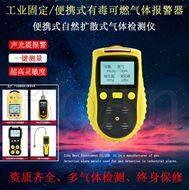 防爆型便攜式一氧化碳檢測報警儀