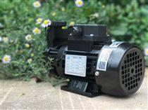 2HP耐高溫機械密封熱油循環泵