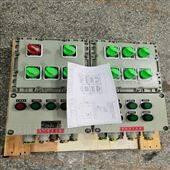 BXM(D)系列防爆照明(动力)配电箱(ⅡB/ⅡC)