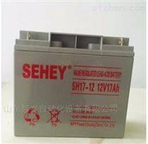 SEHEY西力蓄电池SH17-12