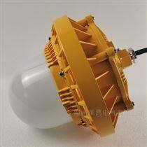 FGV1246_LED免維護節能防爆泛光燈