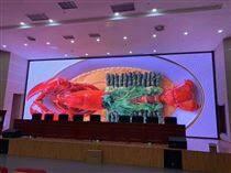 多功能厅会议室P3全彩LED显示屏报价方案