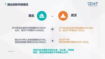 2018年湖北安防市场约为196.83亿