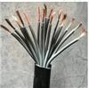 YZW 10*1.0中型橡套软电缆